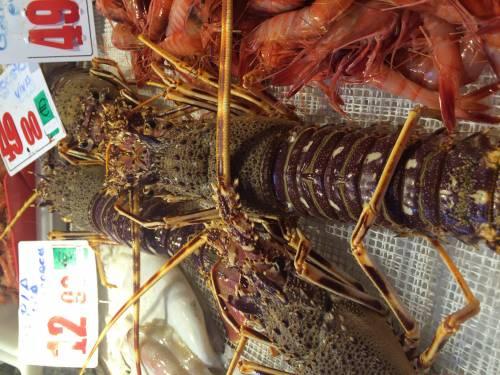 Pescado y marisco gallego, el mejor aliado en la cocina