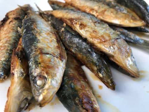 Al olor de las sardinas