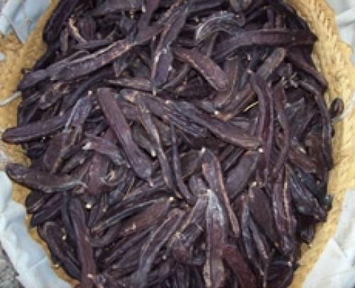 La Algarroba, otra forma de tomar chocolate