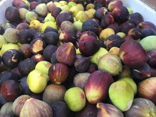 Los higos, la fruta mediterránea por excelencia