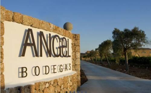 Bodegas Ángel: Una Ilusión Californiana Hecha Realidad en Mallorca | Video Cata de 4 Vinos