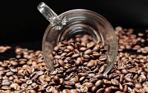 Máquinas de café en grano de Incapto, el sustituto para las cápsulas de café