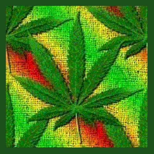 Cocinando con marihuana
