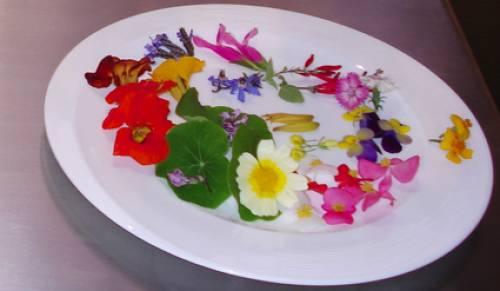 Flores comestibles o ensaladas de primavera
