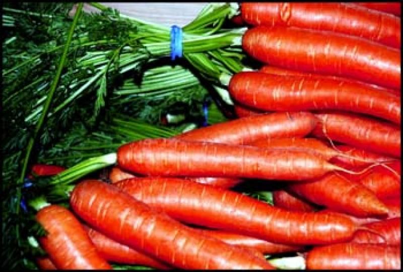 La Zanahoria Una Verdura Historica Con Multiples Propiedades Para La Salud A Fuego Lento Zanahoria, salud y mucho color. la zanahoria una verdura historica