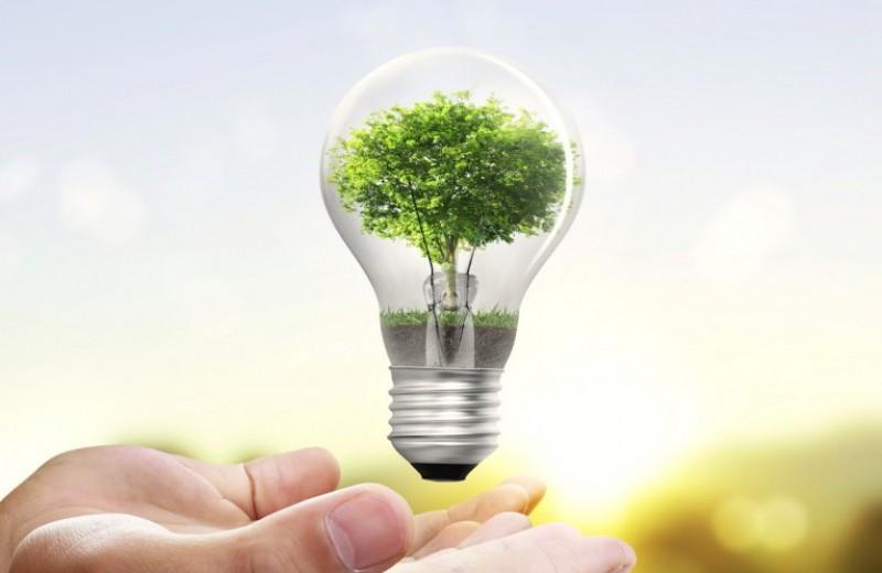 Por qué es importante ahorrar energía? ¿Cómo hacerlo? - A Fuego Lento