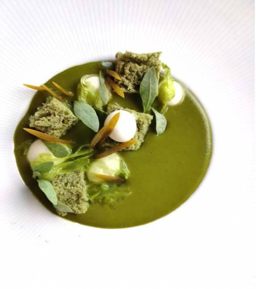 Crema de Verdolaga Algas Queso Oveja | Entrantes | Vegetales Marinos | Lácteos