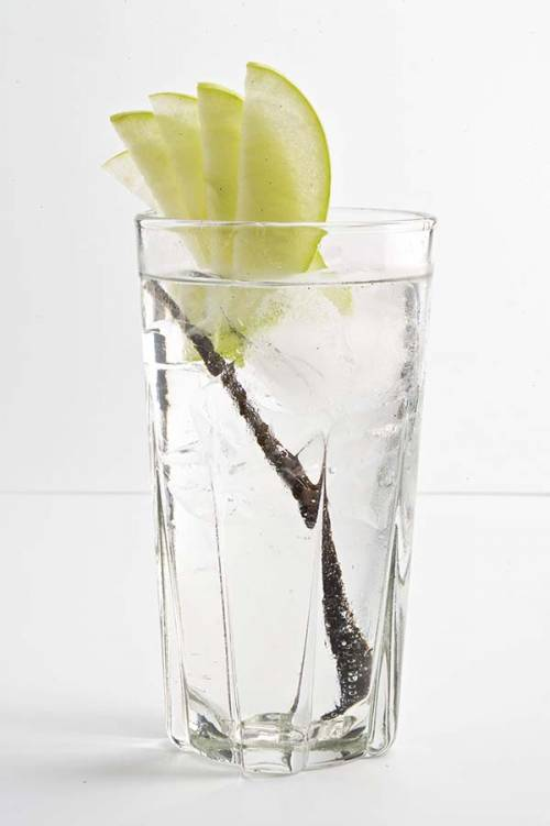 Pleasure Vodka Tonic