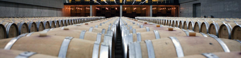 Buezo vendimias seleccionadas y vinos de guarda (D.O. Arlanza)
