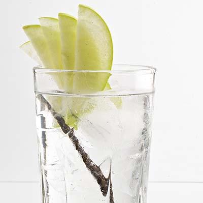 Receta Cóctel Gin Tonic U Luvka